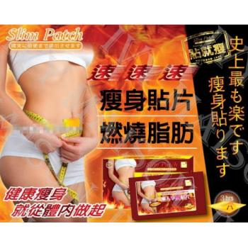 Taiwan Sleeping Slimming Patch 10pcs